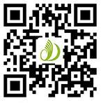 中国电动车网手机站