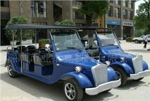 亚维克8座豪华电动贵宾车