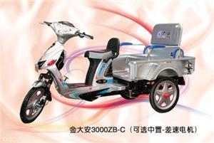 天津大安中置差速客货两用电动三轮车