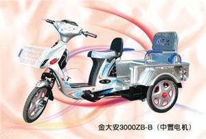 金大安3000ZB-B老人休闲电动三轮车