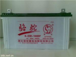 电动游专用免维护蓄电池