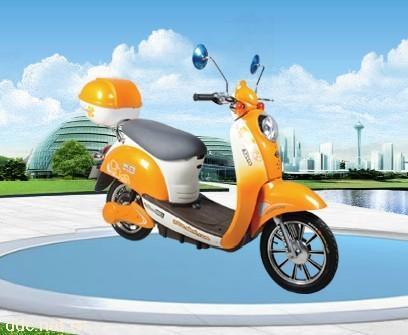 新日风雅11代电动车 488元高清图片