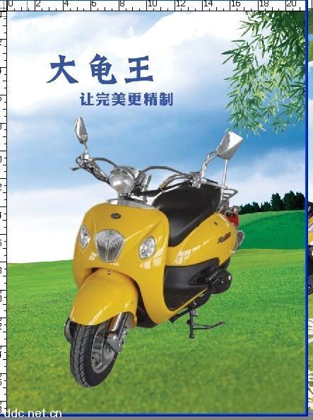 中国电动车网 产品中心 电动摩托车 > 大龟王助力车