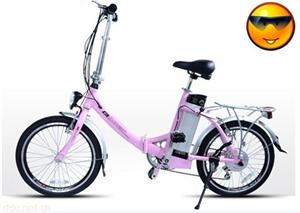 绿行牌电动自行车(优悦公主)