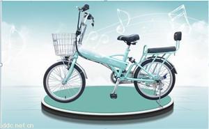 绿行牌电动自行车(绿丽)