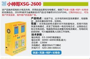 徐州中创小帅哥挂壁式投币式电动车快速充电站XSG-2600