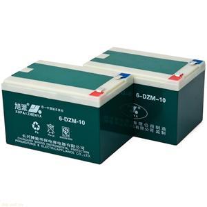 旭派6-DZM-10电动车电池
