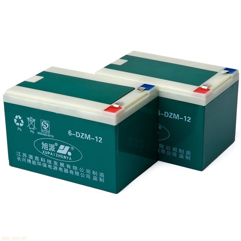 旭派6-dzm-12电动车电池