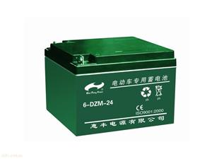 电动车电池6-DZM-24