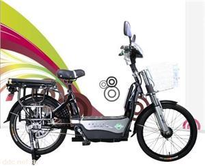 比德文22寸VS902-2超级骆驼电动自行车