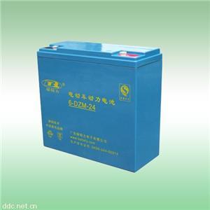 广东电动车6-DZM-24电池