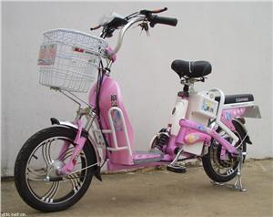 盛扬神话简易时尚款电动自行车