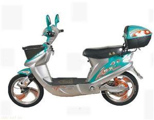 恒光250W钟爱一生电动自行车