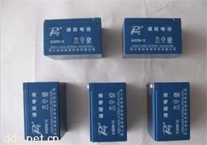 12V免维护动力电动车蓄电池