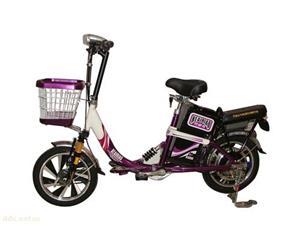 天津小鸟简易款48V350W电动车自行车
