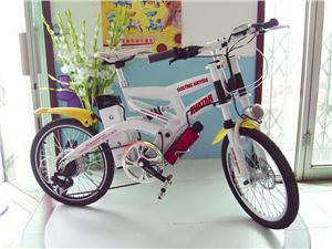 天津格律诗20寸锂电电动自行车