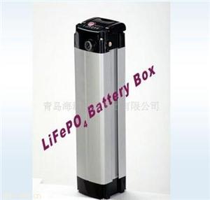 山东海霸电动自行车磷酸铁锂电池