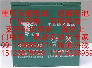 重庆天能电池