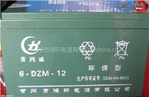 常州鸿轩6-DZM-12电动车蓄电池