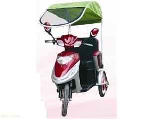 """""""洪圣""""DYL35-A电动轮椅三轮车(带蓬)"""