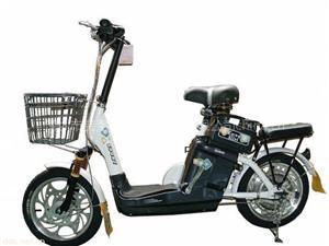 宝路仕48V金苹果简易款电动自行车