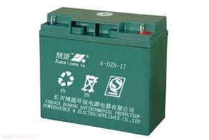 湖州长兴旭派6-DZN-17电动助力车电池