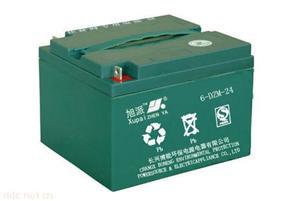 6-DZN-24电动车电池
