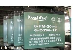 康丽欣排气式电动车蓄电池6-DZM-12