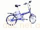 QD-002SAL电动两轮自行车