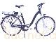 QD-04电动两轮自行车