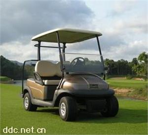 东莞卓越两人座电动高尔夫球车