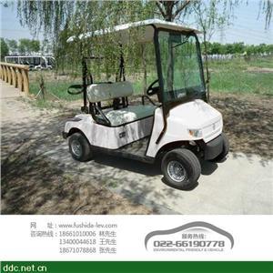 富士达电动高尔夫球车(两座)
