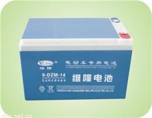 6-DZM-14维隆电动车蓄电池