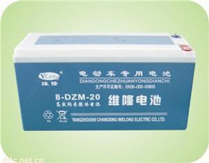 8-DZM-20维隆电动车蓄电池