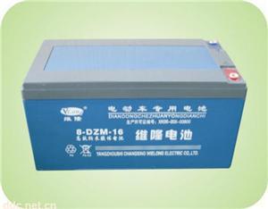 8-DZM-16维隆电动车蓄电池