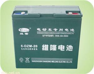 6-DZM-20维隆电动车蓄电池