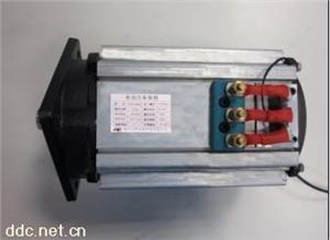 电动汽车变频驱动电机