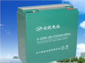 新锐6-DZM-20电动车动力蓄电池