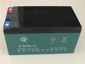 永恒8-DZM-14蓄电池
