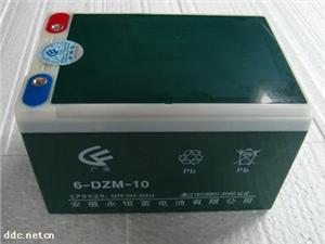 永恒6-DZM-10蓄电池