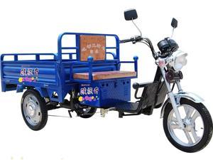 常州欧派奇大太子中置三开门电动三轮车