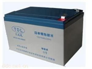 天地龙12V15AH电动助力车蓄电池