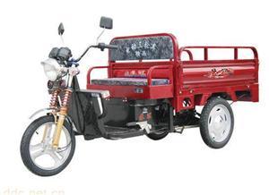 常州市国锋车辆厂大太子双驱差速三开门SG010-2电动三轮车