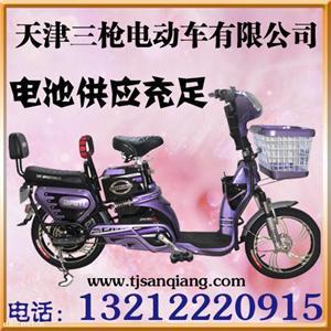 依兰公主款电动车  低耗能电动车 天津三枪电动车公司