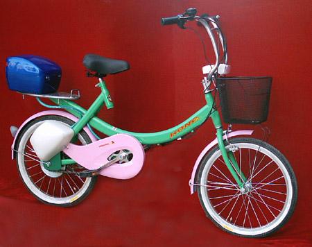 自行车改电动车套件 套件包括:电机,电池,控制器,充电器,大灯喇叭总成