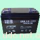 浙江恒基IEB12-100电动车蓄电池