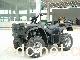 沙滩车 ATV250cc EEC