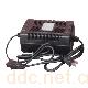 电动车充电器-双星24VI型电动车