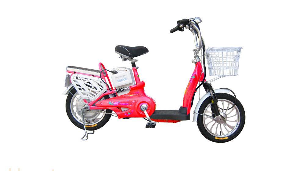 天津电动车-天津市电动自行车有限公司