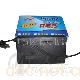 天灵脉冲三段式电动车充电器